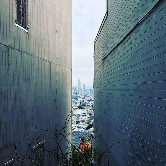 Modern city against sky