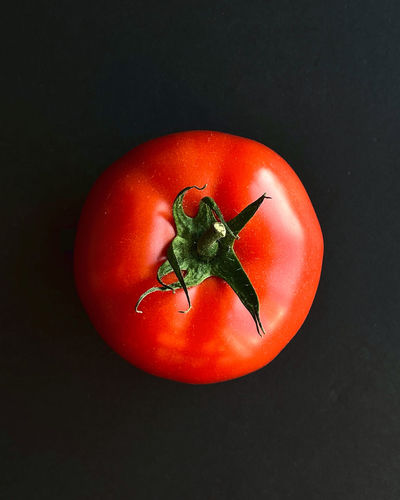 Directly above shot of tomatoes against black background