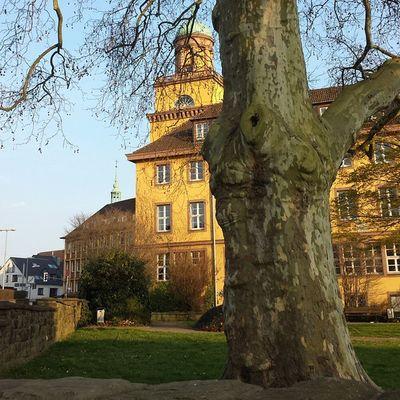 Witten Rathaus im Frühling 2
