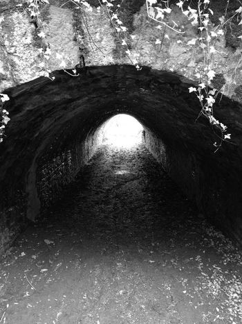 Day Shadow No People Full Frame Tunnel Vision Tunnel View Tunnel Tunnel Of Light TunnelPorn Nature Outdoors Illuminated The Way Forward Blackandwhite Black & White Castle Ward National Trust Black And White Friday