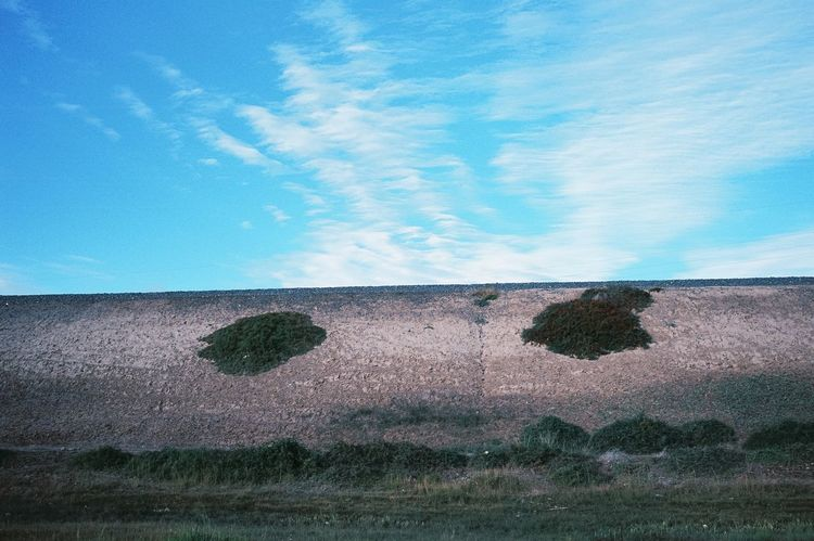 Film Photography Nature Sky Day Outdoors Cloud - Sky No People Blue Grass Tranquility Beauty In Nature Growth Scenics Landscape