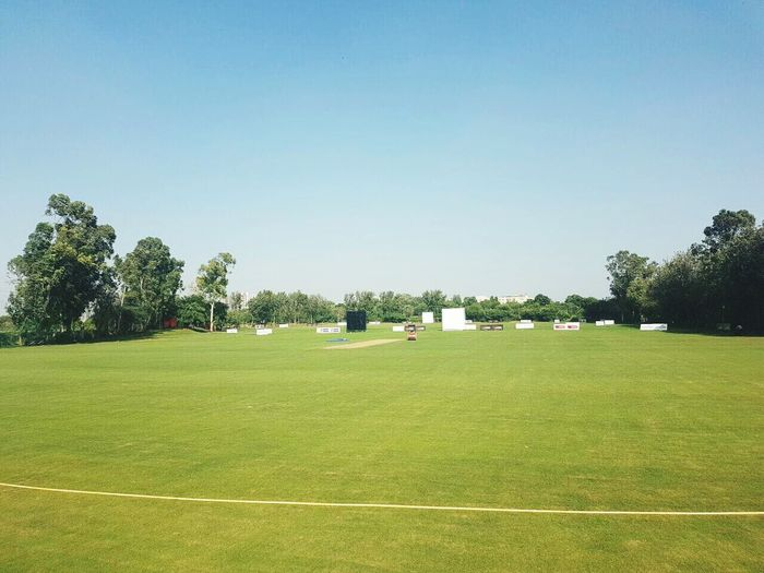 Clear Sky Green Color Outdoors Tree Track And Field Stadium No People Sport Blue Sunny Grass Lush - Description Cricket Field Cricket! Day Sportsman