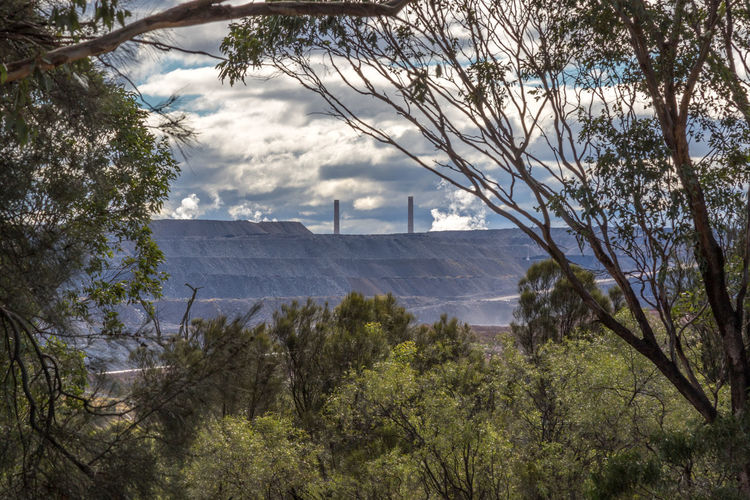 Coal mine and tailings viewed through trees Australia Australian Industry Power Trees Architecture Branch Built Structure Coal Day Electricity  Energy Growth Mine Mining Mountain Nature No People Outdoors Sky Tree