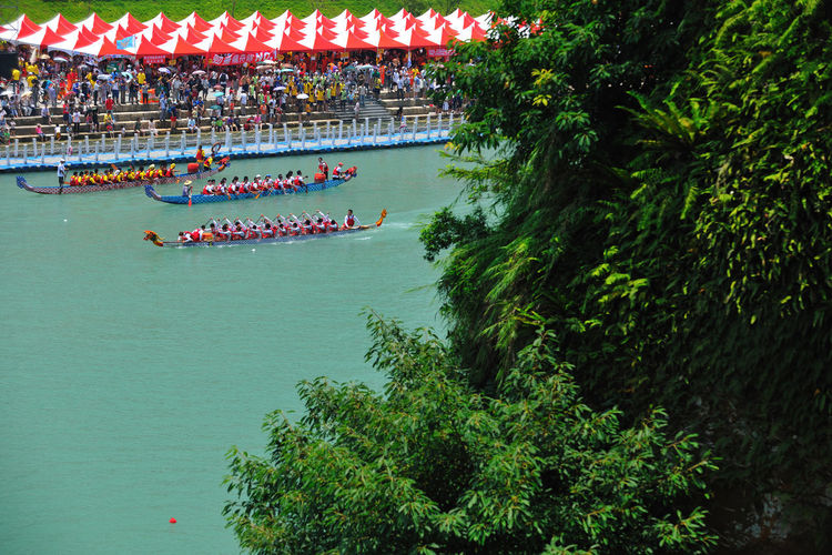 Day Large Group Of People Men Nature Nautical Vessel Outdoors People Real People Sea Tree Water 休閒 台灣 性質 有趣 比賽 碧潭 興奮 船 運動 龍舟
