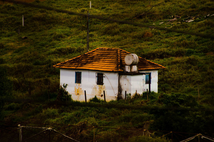 Old house on field against trees and plants