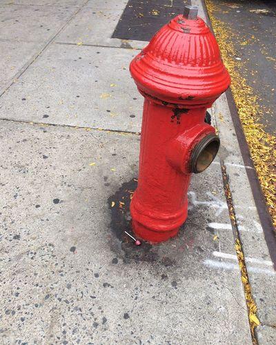 Hells Kitchen  New York City Firehydrant