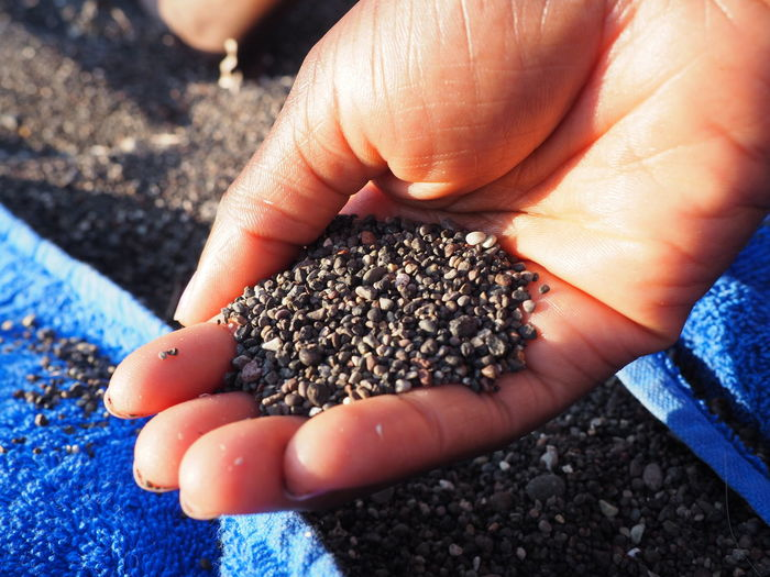 Close-Up Of Hand Holding Gravels At Field