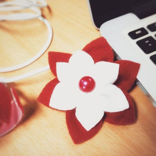 Photoproject365 Clovewebstudio July2015 Flower Day 21 of 365 - Souvenir from a friend