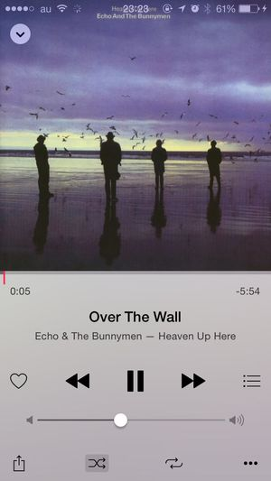 What Are You Listen To Echo & The Bunnymen OVER THE WALL