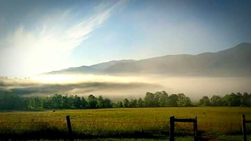 Smokeyeye Landscape Nature Agriculture Rural Scene Beauty In Nature Fog Sky No People Field Tranquil Scene