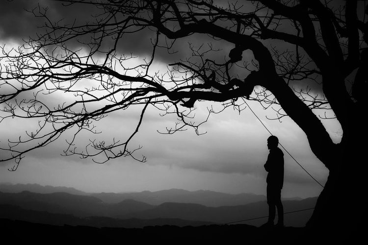 Dark Blackandwhite Photography Darknessfalls Dusktimeshot Cloudy Day Windy Day Blackclouds Rainnyseason Baretree Shadows Shadowshot