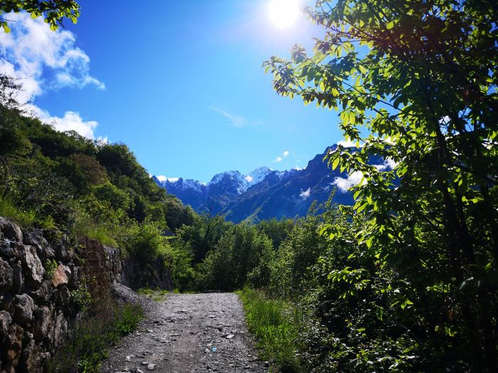 Footpath amidst trees and mountains against sky