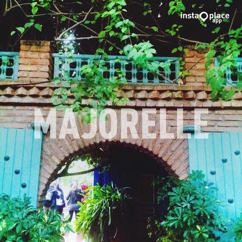 Jardin Majorelle Majorelle Majorellegarden Majorellegardens Jardinsmajorelle Jardin De Majorelle Majorelle's Garden Marrakech Marrakesh Marrakech Morocco Morroco Maroc 🇲🇦🇲🇦🇲🇦🍃🌿🌿💐🌼🌸🌺🌳🌲🍂 Thetourist Feel The Journey Adventure Club