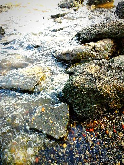 Nature Rocks Lakeshore