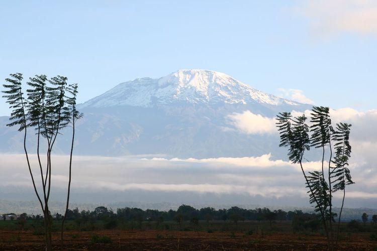 Tanzania Kilimanjaro Mountains Nature Africa Landscape EyeEmNewHere Neighborhood Map The Great Outdoors - 2017 EyeEm Awards