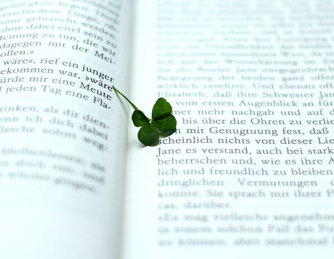 Fourleafclover🍀 The Still Life Photographer - 2018 EyeEm Awards The Creative - 2018 EyeEm Awards Text Book Publication No People Leaf Close-up Green Color Fragility