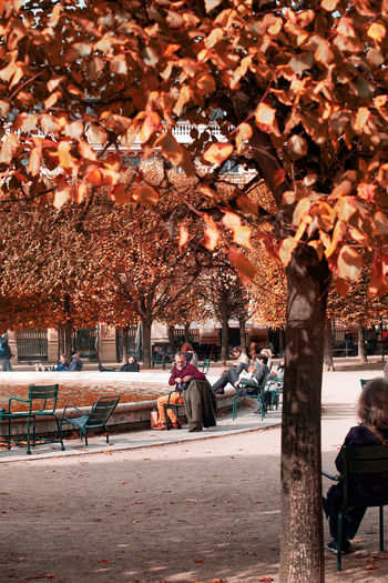 People sitting on bench in park during autumn