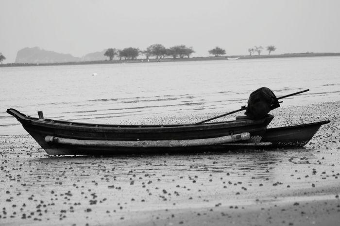 Nautical Vessel Water Rowboat One Person Canoe Oar People