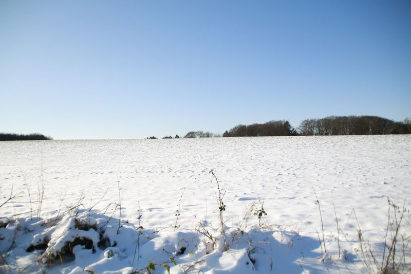 Scenic view of snow covered field against clear blue sky