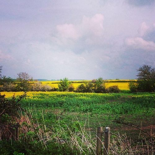 Stratforduponavon Bikeride Farmland Fields Sunnyday Spring2014 Spring Nature Beauty