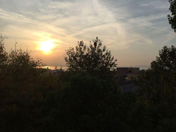 Cerrahpaşa teras Sabah Güneşi First Eyeem Photo
