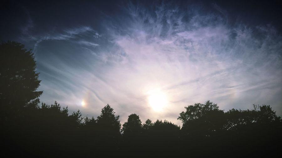 3 sun's make a halo. Zonsondergang Bijzon Natuur Groningen Sunset Second Sun Sun Halo Sky Clouds Clouds And Sky Tree Astronomy Silhouette Sky Scenics Tranquility Calm