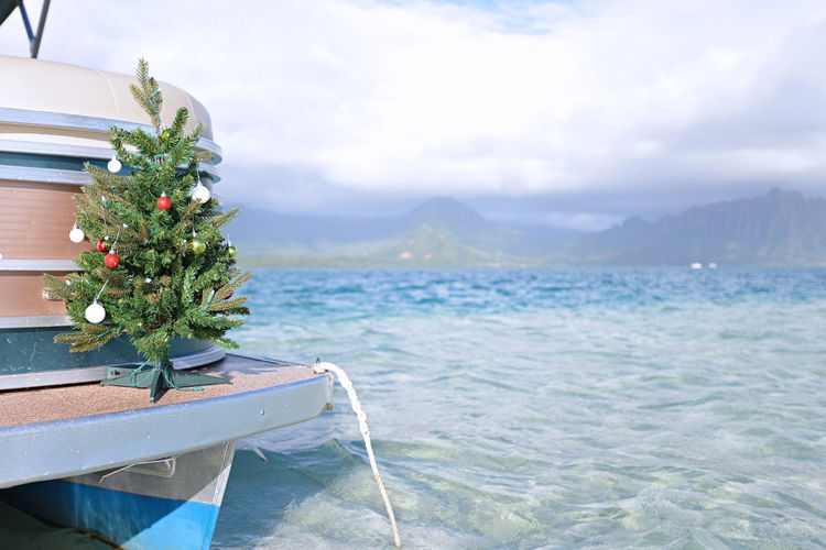 Christmas on the ocean in Hawaii Boat Christmas Christmas Christmas Decoration Christmas Decorations Christmas Tree Cloud - Sky Day Mountain Nature No People Ocean Outdoors Palm Tree Plant Sky Tree