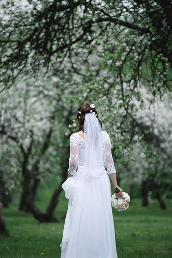 Wedding Wedding Photography Bride White Dress Secret Garden Blooming Blooming Tree Blossom