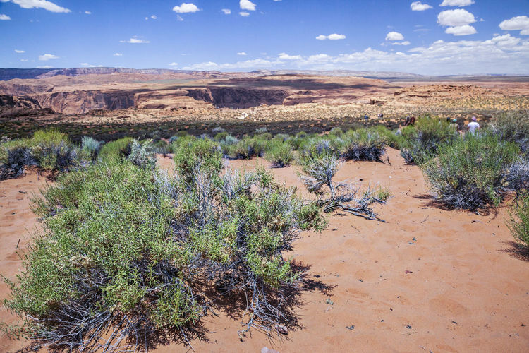 Clouds And Sky Desert Geology Grass Grass Grassy Growth Horseshoe Bay Nature Outdoors Physical Geography Plant Sunny Day Tranquil Scene Travel Arid Climate Clouds Desolate Scene Horizontal Composition Sand