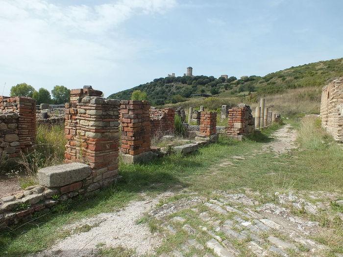 Velia Ascea Cilento ArcheologicSite Archeological Park Archeology Archeological Archeologie Tree Sky Architecture City No People Outdoors Day