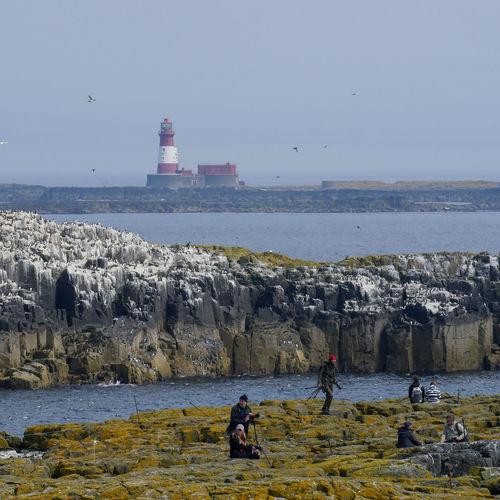 "5. Farne Islands National Nature Reserve. ""Is this the most remote job in Britain? The Farne Islands may be a haven for seabirds and puffins but it is also home to National Trust warden Tom Hendry who has had to get used to no running water and dive-bombing attacks from Arctic terns.""............ ByJOHN INGHAM........ 5. Nationales Naturschutzgebiet der Farne-Inseln. ""Ist das der entfernteste Job in Großbritannien? Die Farne-Inseln sind vielleicht ein Paradies für Seevögel und Papageientaucher, aber es ist auch die Heimat des National Trust-Aufsehers Tom Hendry, der sich an fließendes Wasser und Tauchbombenangriffe von Küstenseeschwalben gewöhnen musste . ""............ Von JOHN INGHAM ........5. Riserva naturale nazionale delle isole Farne. ""Questo è il lavoro più remoto in Gran Bretagna? Le Isole Farne possono essere un rifugio per uccelli marini e pulcinelle di mare, ma è anche la sede del guardiano del National Trust Tom Hendry che ha dovuto abituarsi a non correre acqua e attacchi di bombardamento subacqueo da sterna artica . ""............ Di JOHN INGHAM ........ Nature Reserve Farne Islands Longstone Lighthouse Seabirds Seabirds In Flight Nature Lover Island Life Simple Pleasures Peace Simple Quiet Love Distant View The Great Outdoors Isolated Island Photographers Camera - Photographic Equipment Water Sea Group Of People Sky Horizon Over Water Lighthouse Coastline Coastal Feature Seascape Rocky Coastline Tide"