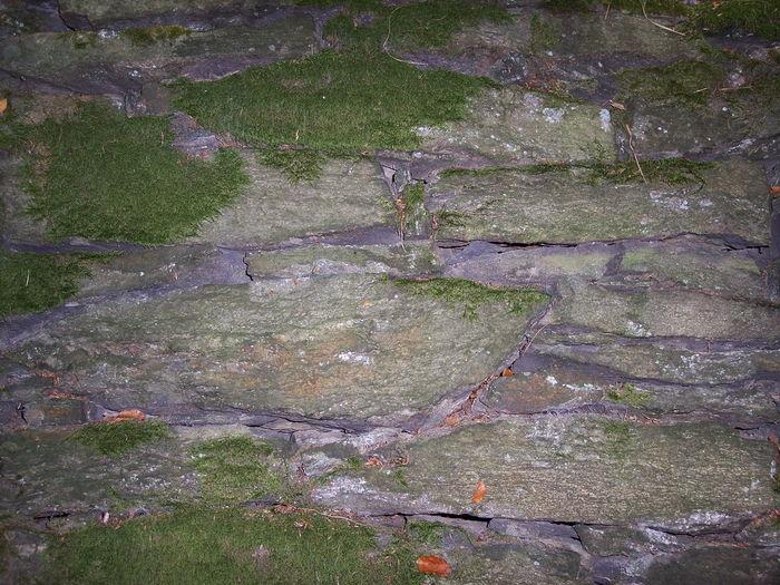 Mauer Naturstein Wall Moss Rock Steine Stone Wand