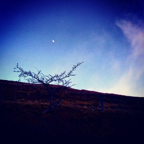 Small Moon.