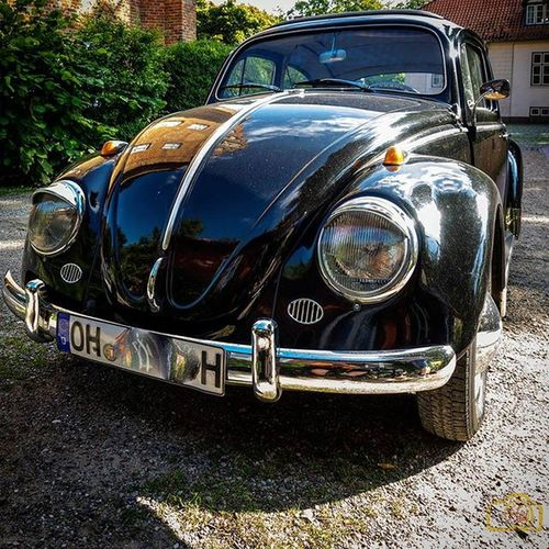 Käfer VW Vw_käfer Beetle Volkswagen Classic Classiccar Oldcar Olympus Bestoftheday Ostholstein Oh