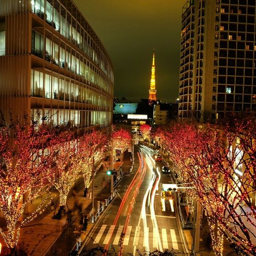 Christmas lights bloom in Tokyo Christmastime Christmas Decorations Christmas Streetphotography Blurry Travel Photography Seeing The Sights