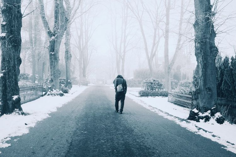 Rear View Full Length Of Man Walking Amidst Trees On Road During Winter