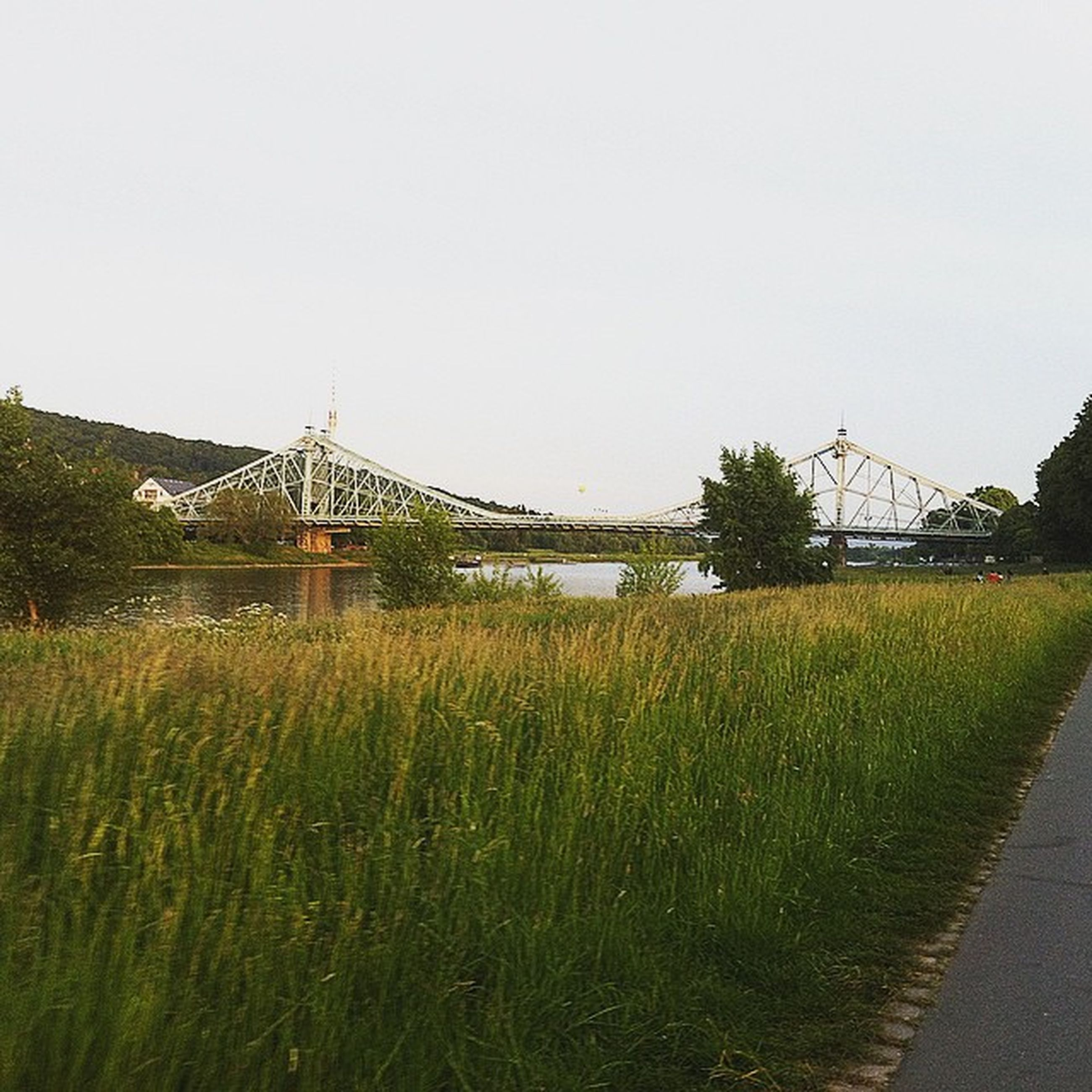 clear sky, architecture, built structure, grass, copy space, building exterior, field, connection, plant, green color, growth, nature, grassy, bridge - man made structure, day, landscape, outdoors, water, tranquility, no people