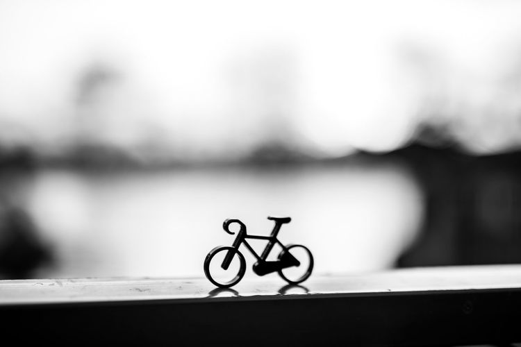 Bycicle Focus