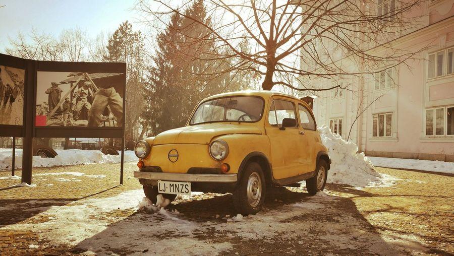 Transportation Outdoors Tree Day Vintage Mode Of Transport Land Vehicle Car No People Vintage Cars Fiat500 Fiat Ljubljana