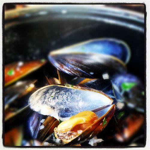 Starter, mussels
