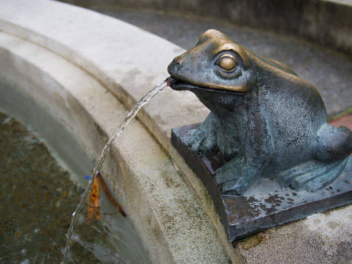 A frog fountain water feature Fountain Frog Fountain No People Outdoors Water Feature Water Fountain