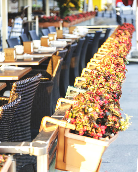 High angle view of potted plants by tables and chairs at restaurant