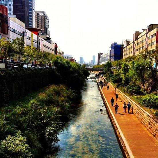 A walk in Seoul Ihithro Instago Instagram Instamood sunnyday streetphotography photography photooftheday picoftheday bestoftheday nikon d7000