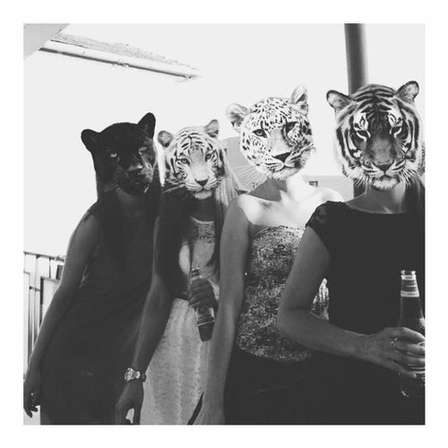 Animal Themes Friends Madness Time Blackandwhite Photography Black And White Portrait Animals In The Wild Animal Mask