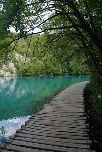 Beautiful Plitvice Lakes National Park Plitvice National Park Croatia Lake Lake View Ladyphotographerofthemonth Landscape_Collection Shootermag Path Pathway Water Tree Tranquil Scene Nature Beauty In Nature Scenics Landscape Growth Water Reflections Tranquility Forest Eye4photography  Summer Travel Destinations Reflections In The Water Breathing Space Investing In Quality Of Life The Week On EyeEm Been There. Connected By Travel The Great Outdoors - 2018 EyeEm Awards