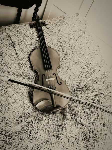 First Eyeem Photo Violin Violins Violinist Music Violine  Violino