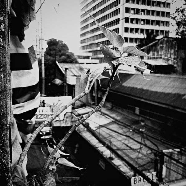 Every picture has a story Bw_collection Bw Instagood Iphotography Building Exterior Architecture Built Structure Outdoors Day No People City