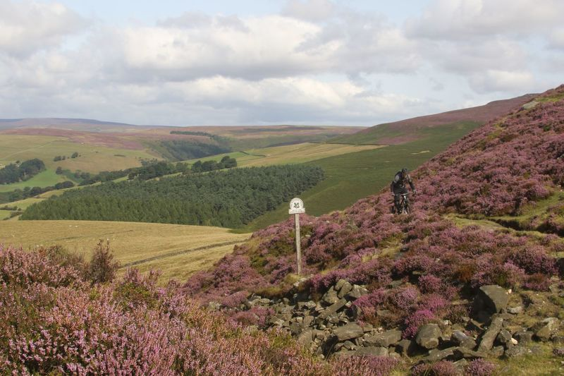 Derbyshire Beauty In Nature Biker Day England Growth Heather Landscape Mountain Mountain Biking Nature No People Outdoors Peak District  Riding Scenics Sky Tranquil Scene Tranquility Tree