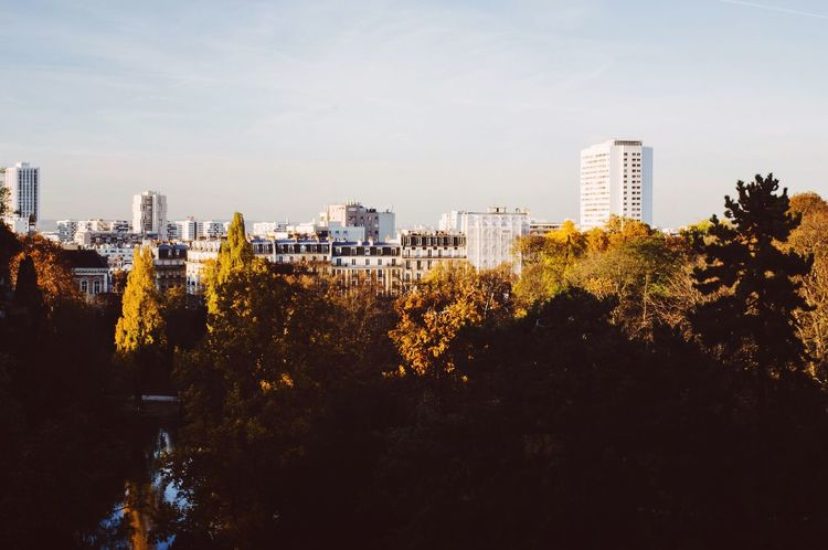 Autumn in Paris 🍁 Pentax VSCO Autumn Autumn Colors Paris Park Sunset_collection Cityscapes Urban Exploring