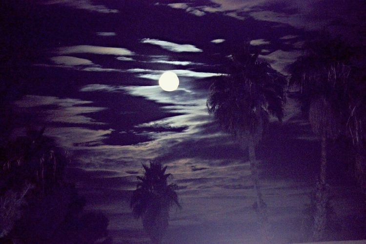 Adapted To The City oasis in the sky Shadow Moon Close-up No People Beauty In Nature Dramatic Sky